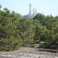 Die Reaktorkatastrophe von Tschernobyl vor 25 Jahren hat die Umweltbedingungen in der Umgebung schlagartig geändert. Während das Gebiet 30 Kilometer rund um das Atomkraftwerk heute eine weitgehend menschenleere Sperrzone ist, […]