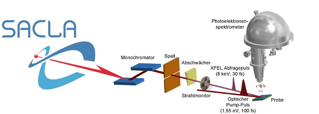 Tiefe Einblicke in ultraschnelle Prozesse: Versuchsaufbau der neuen Messmethode am Röntgen-Freie-Elektronen-Laser in Japan. Links die Quelle der harten Röntgenstrahlung, rechts werden die aus dem Festkörper herausgelösten Photoelektronen vom Spektrometer erfasst. Illustration: L.-P. Oloff